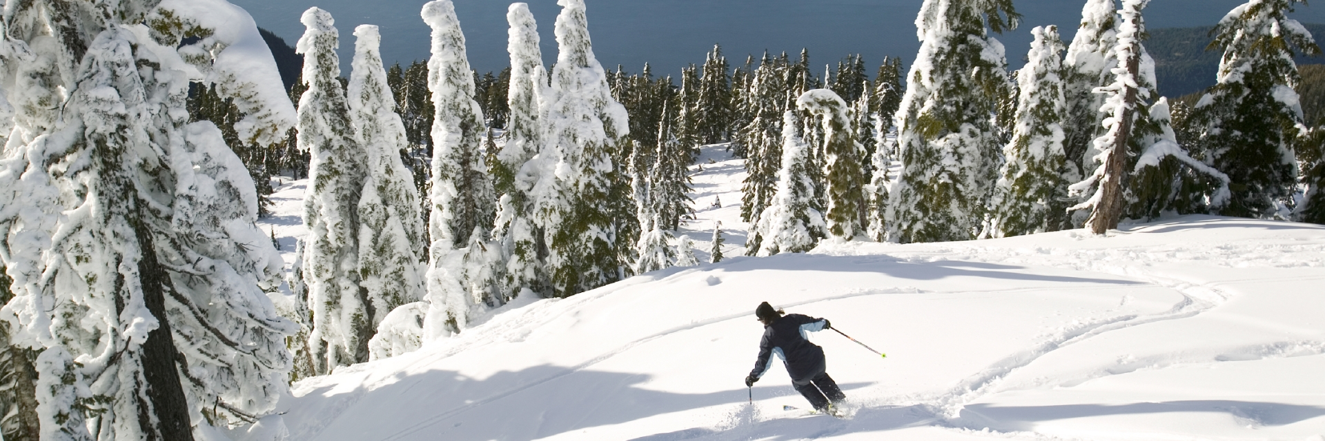 A skier going down a hill on a sunny day.