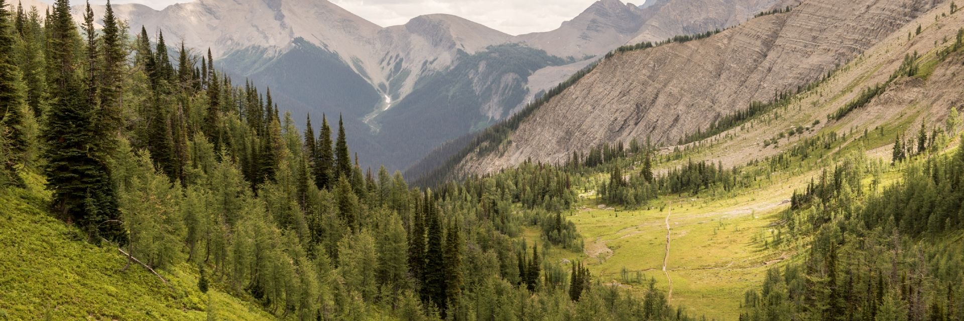 Hikers on the Rockwall Trail in Kootenay National Park, BC.