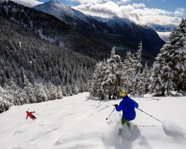 Skiers going down a hill in BC