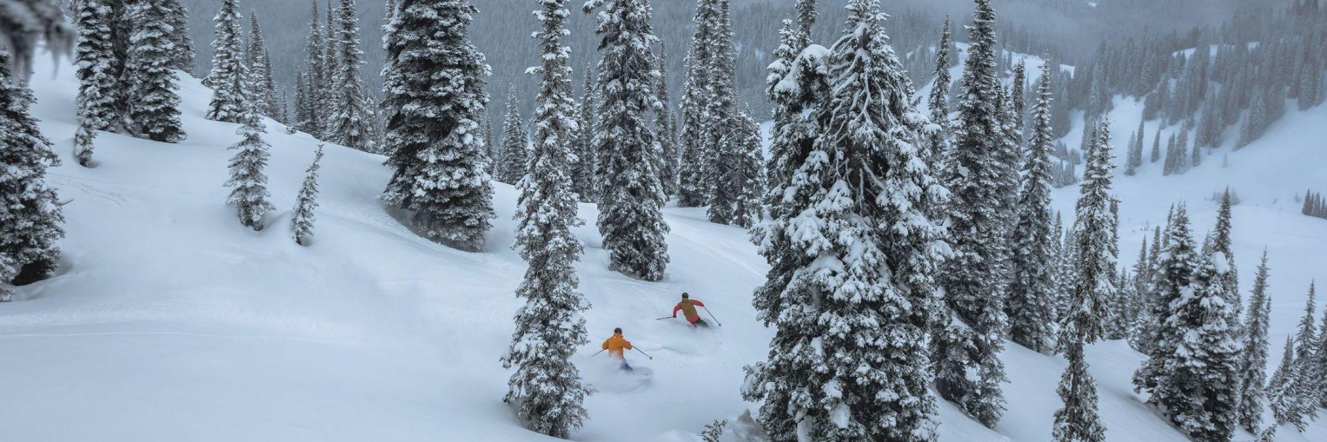 Skiers at Fernie Alpine Resort with town of Fernie in the background.